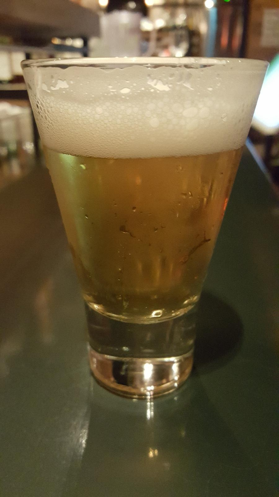 Galleon Dry-Hopped Lager